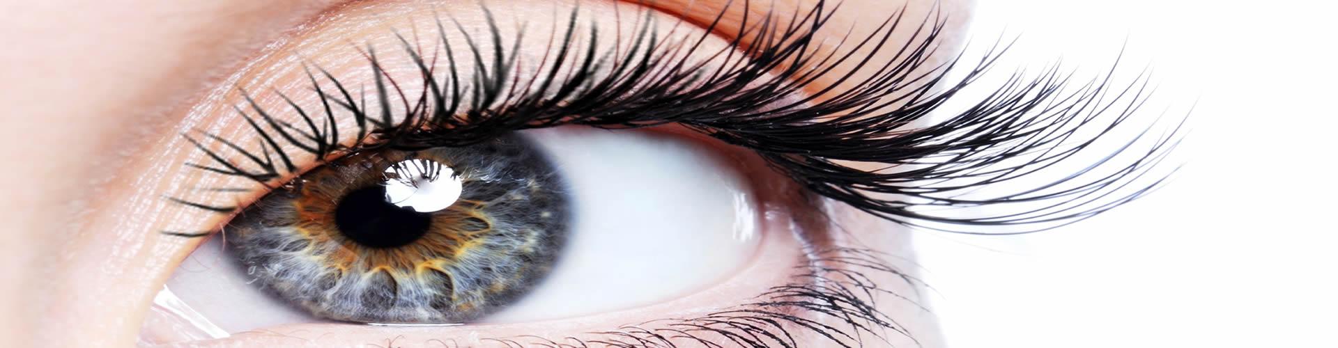 kontaktna sociva1
